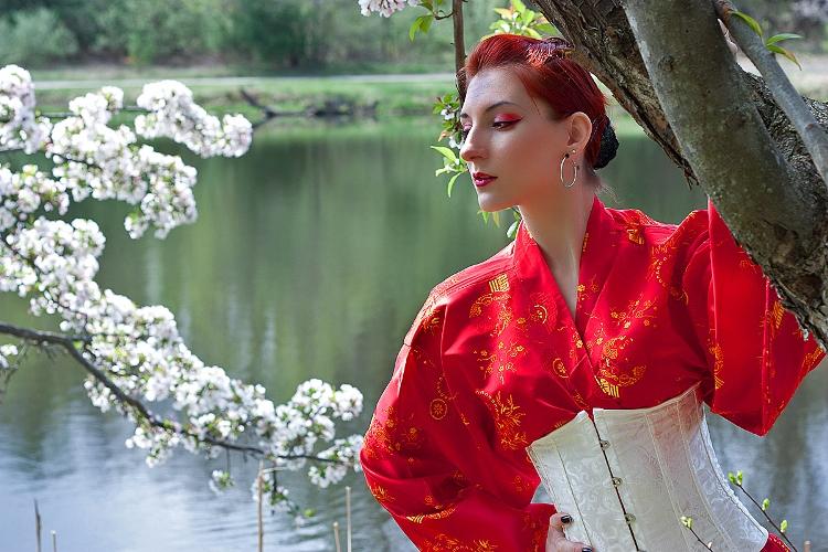 Geisha Costume (Photo by Bad Wolf Images)
