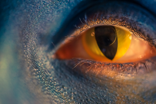 Macro shot of my contacts taken with a 90mm lens on the Sony A7r