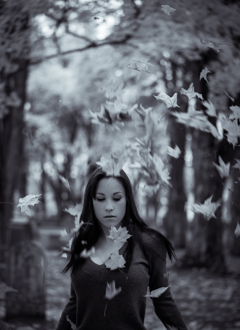 sidebmodeling_photography_anerael_autumn_leaves_bw.jpg