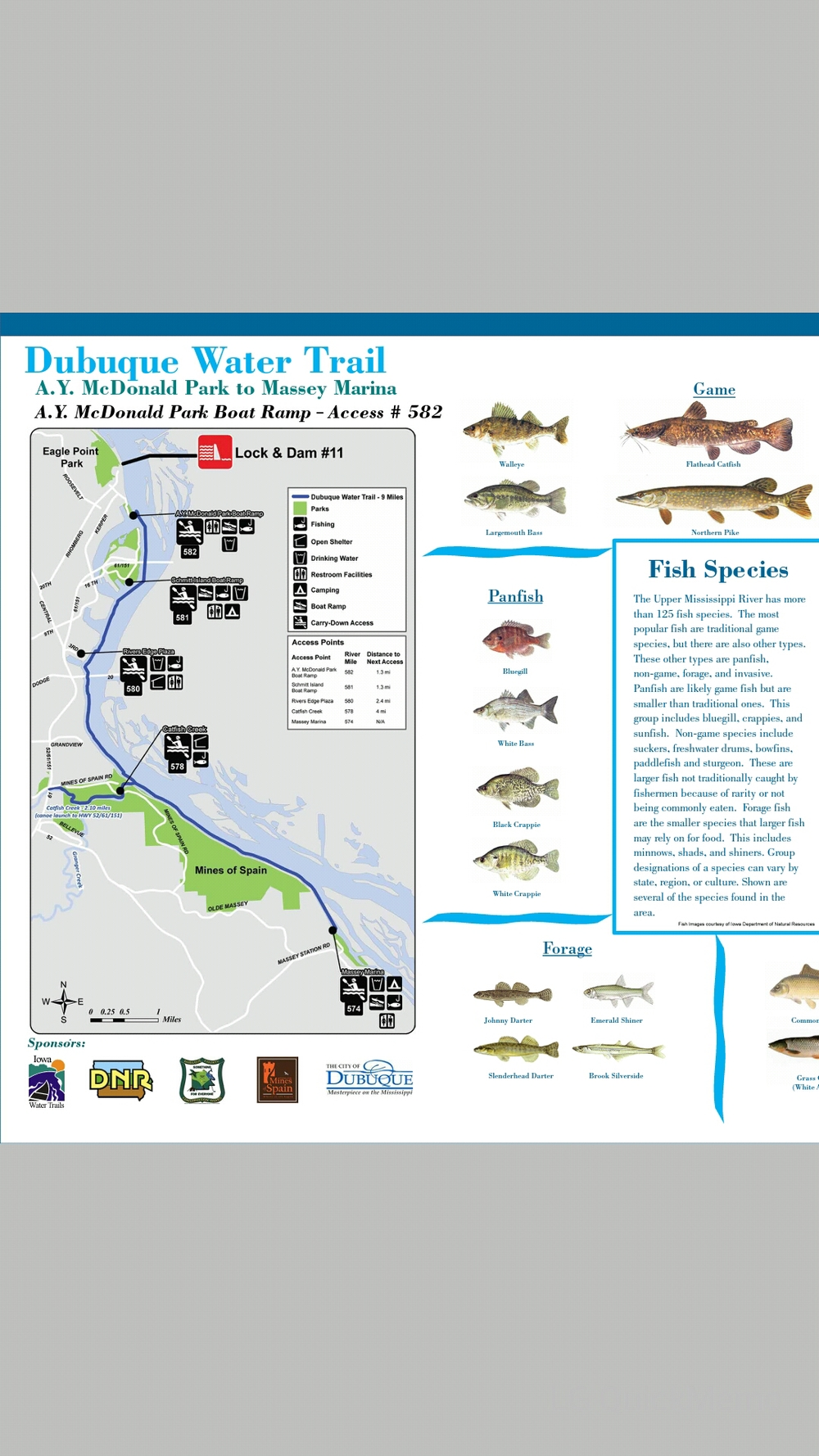 Map and Fish Species at the A.Y. McDonald Boat Ramp