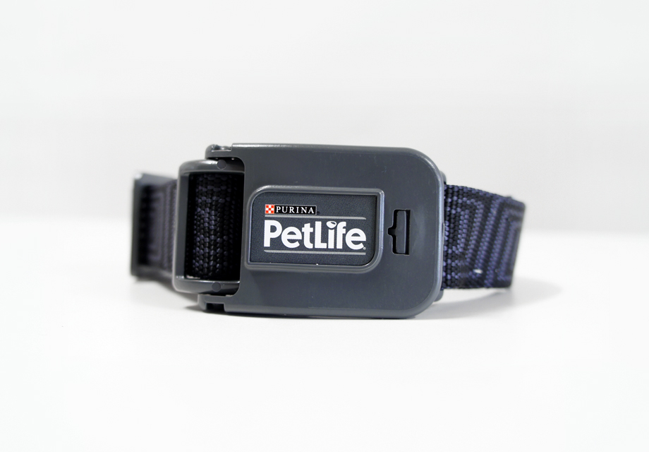 VERT_DESIGN_PETLIFE_BUCKLE copy.jpg