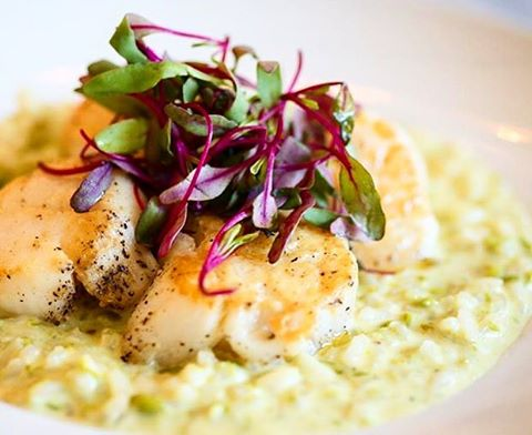 Scallops over sweet peas and parmiggiano reggiano risotto.  #sunday #scallops #oysterbarbk #grandcentraloysterbar