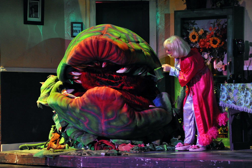 Little Shop of Horrors, Fall 2010. Photo Courtesy of Kristi Sestak