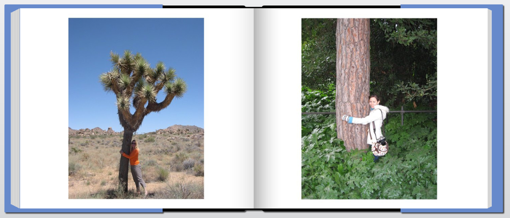 """Tree Hugger"" - page view"