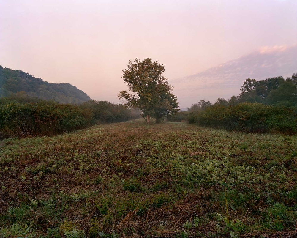 Cleared Meadow, Greenbottom Wildlife Management Area, WV