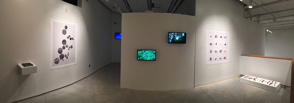 The Upper Snake, installation view