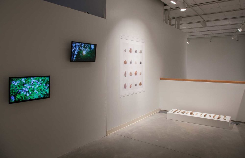 Journey Water, installation view