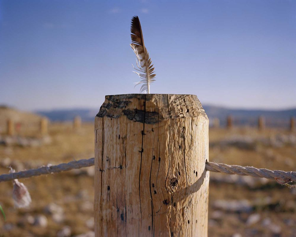 Eagle Feather, Medicine Wheel National Historic Landmark, Bighorn National Forest, WY