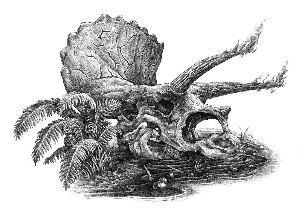 Triceratops_FireSkull_v4.jpg