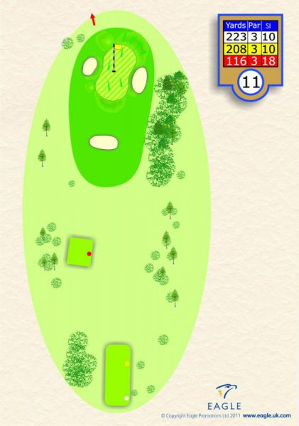Hole 11 Par 3 (The Valley)