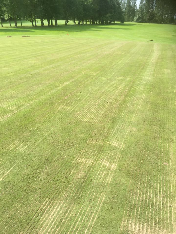 The 3rd Green after Coring, Scarification, and direct injection of Kiln Dried Sand & Bent Seed