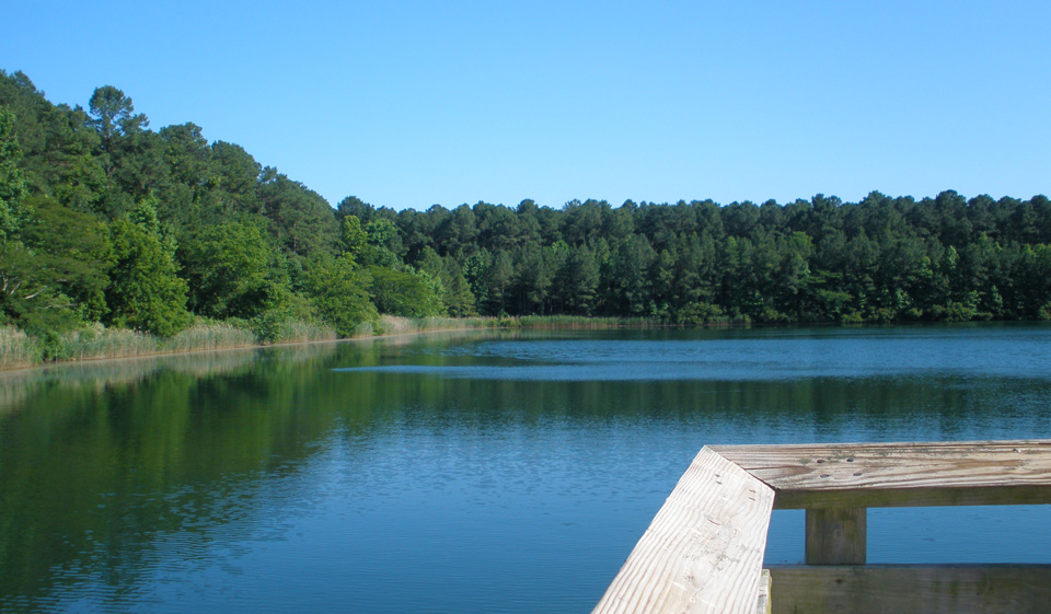 Lake-deck-in-June-2013.jpg