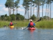 Kayakers explore the wonders of Hoffler Creek.