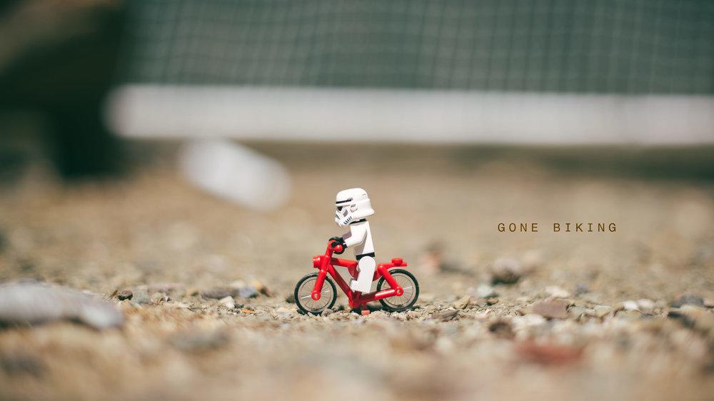 Lego-Portrait-Series-Reggie-Ballesteros-0013.jpg