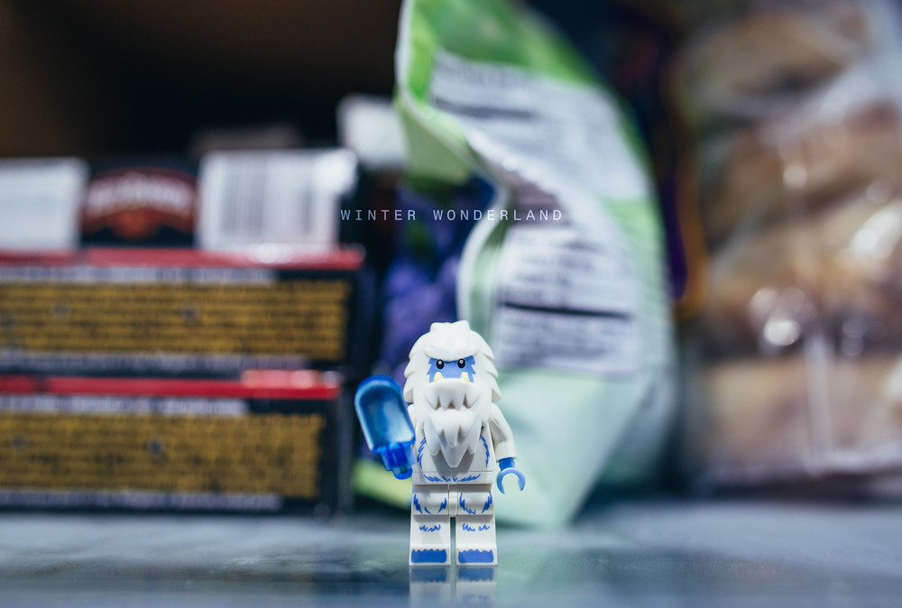 Lego-Portrait-Series-Reggie-Ballesteros-0017.jpg