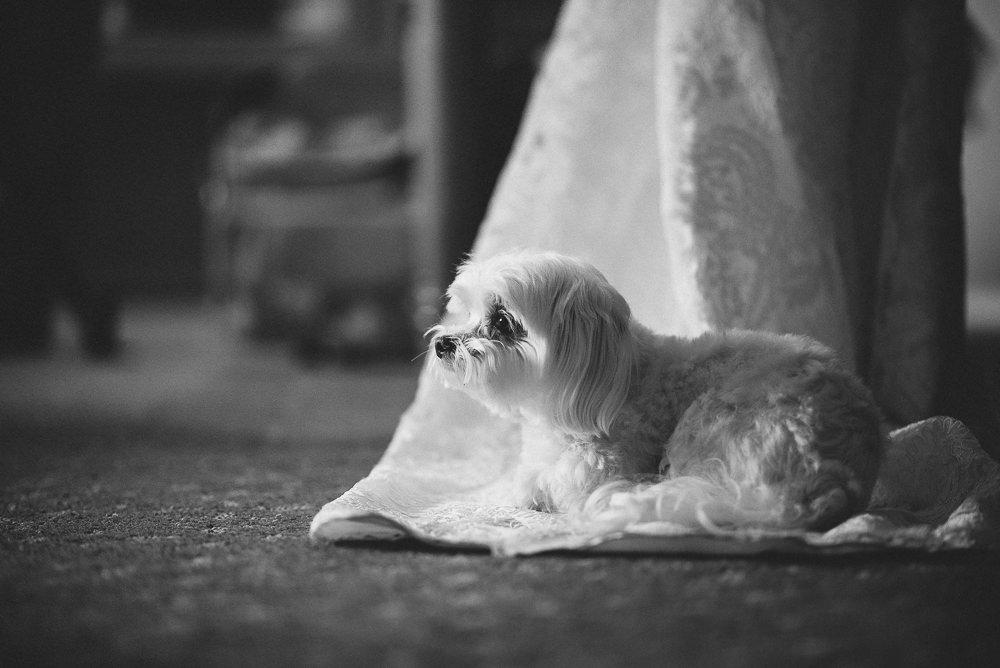 Santa-Rosa-Winery-Wedding-Photography-004.jpg