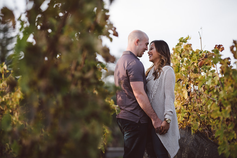 Yountville-Dog-Engagement-Photography-002.jpg