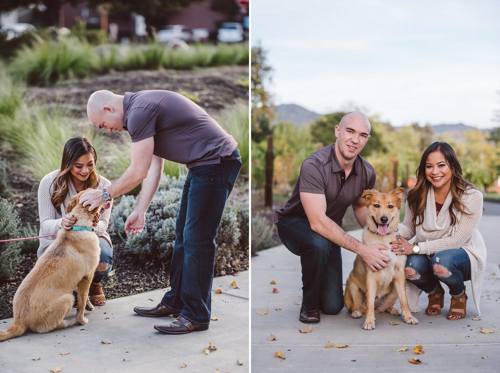 Yountville-Dog-Engagement-Photography-009.jpg