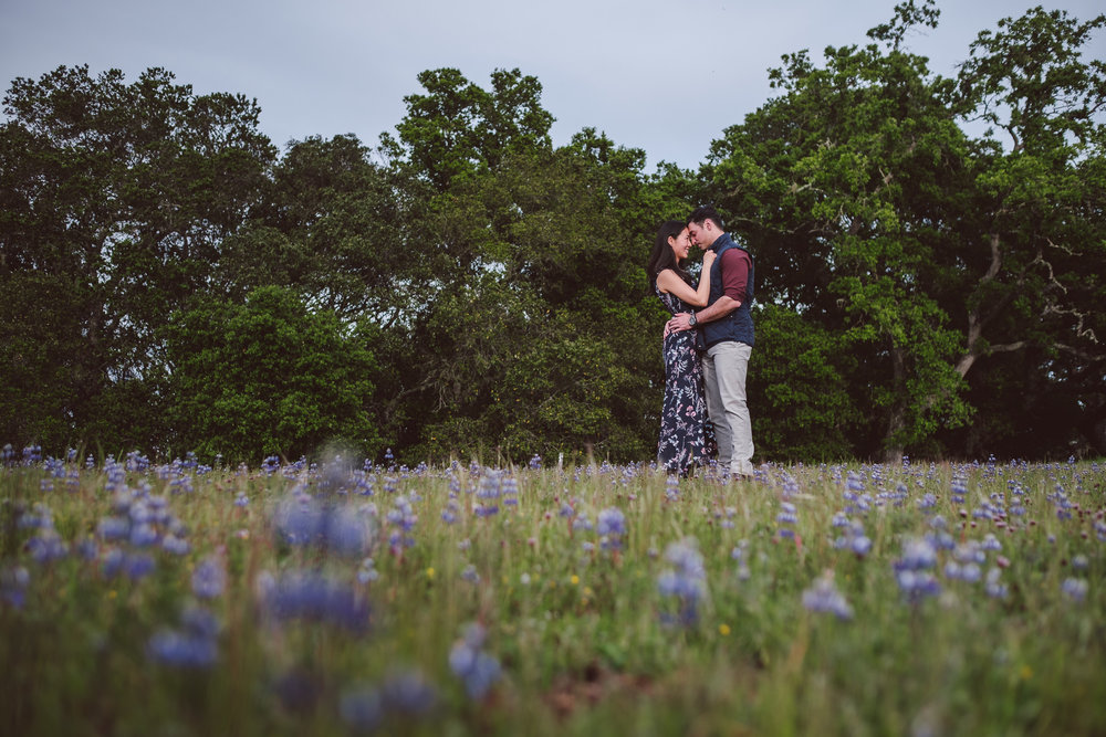 Palo-Alto-Foothills-Park-Engagement-Photography-021.jpg