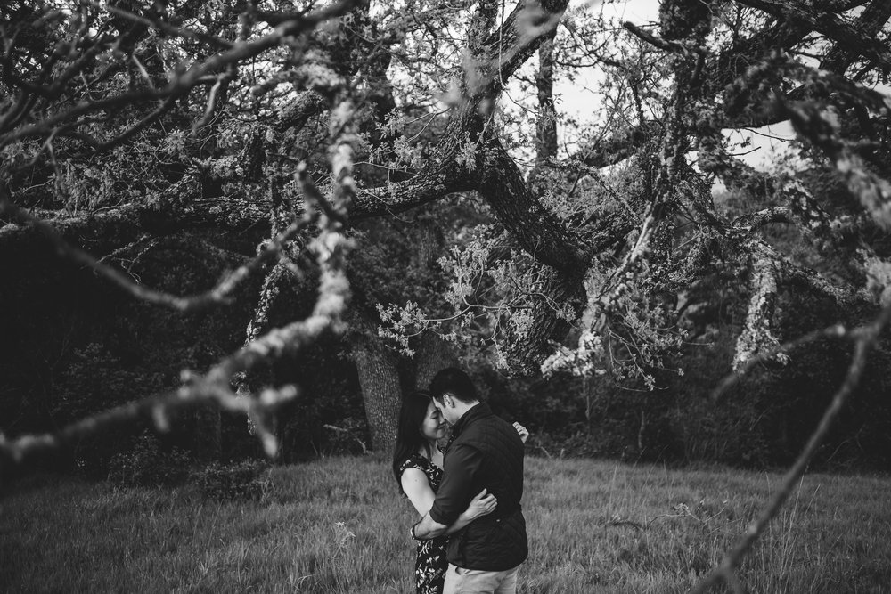 Palo-Alto-Foothills-Park-Engagement-Photography-024.jpg