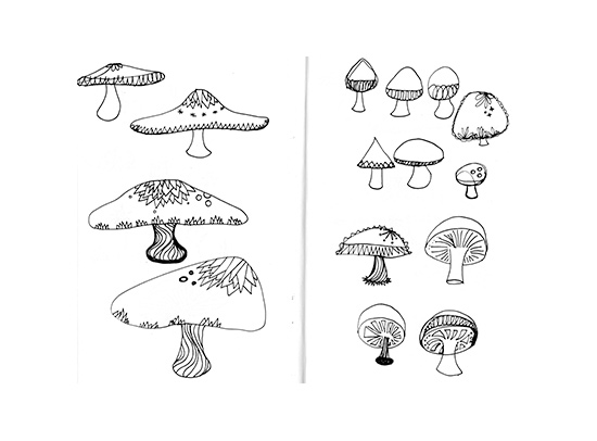 Sara_Franklin_mushroomsketches_blog