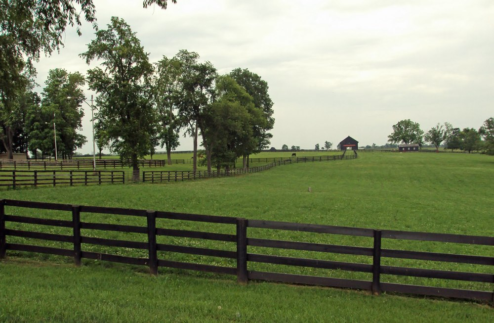 Horse farm on Midway college.jpg