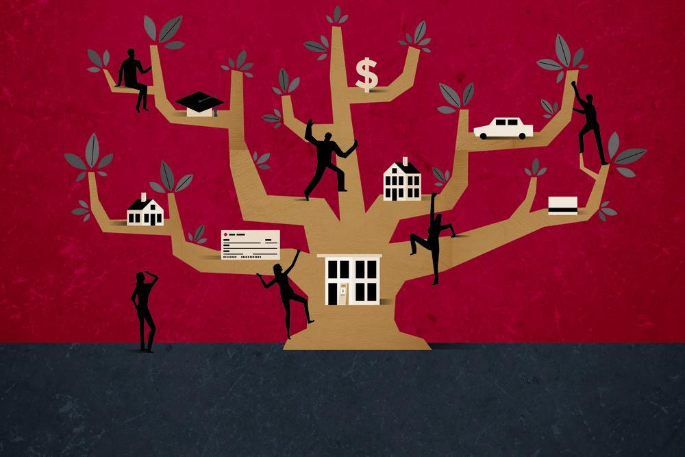 SFCU-Illustrations-tree-300-01.jpg