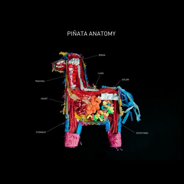 Pinata Anatomy