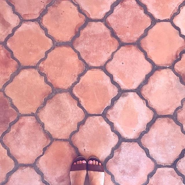 I love terra-cotta floors! 😍 📷: @luna_zorro (I love her insta feed by the way!) #ihavethisthingwithfloors #dsfloors #terracotta