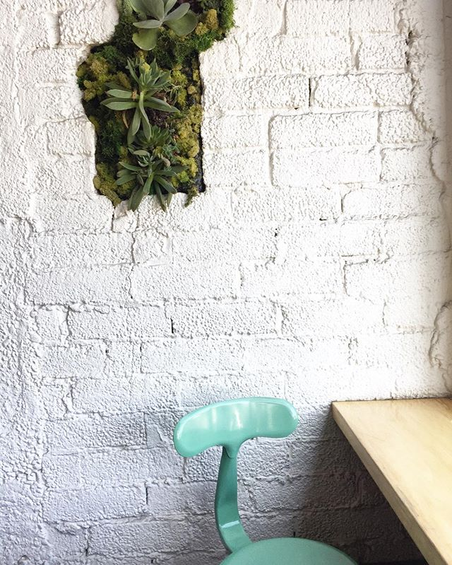 The coolest seat in the house! #whitewalls #succulents #whitebrick