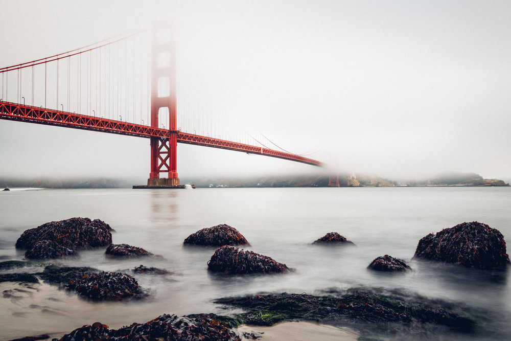 Milky Waters Under the Golden Gate