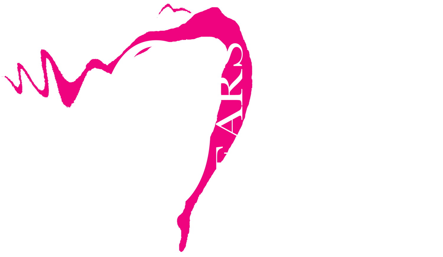 The Dance Pointe
