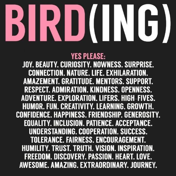 Yes Please. 2017 Jennifer Hoffman Bird Who Loves Birds