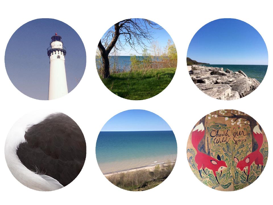 Top Row: Wind Point Lighthouse, Wind Point, Port Washington Bottom Row: Lesser Black Backed Gull, Virmond Park and Brenner Brewing Co. Photographs: Jennifer Hoffman 2017
