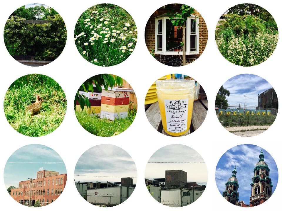 """Top Row: Roland Kulla's Backyard. Middle Row:Roland Kulla's Backyard: """"Hell"""" or """"No"""" rabbit, Bike-a-bee beehives, """"Roland's Late Summer"""" honey,The Plant garden. Bottom Row: The Plant, Industrial Building #1 and #2,Immaculate Heart of Mary. Photographs: Jennifer Hoffman 2017"""