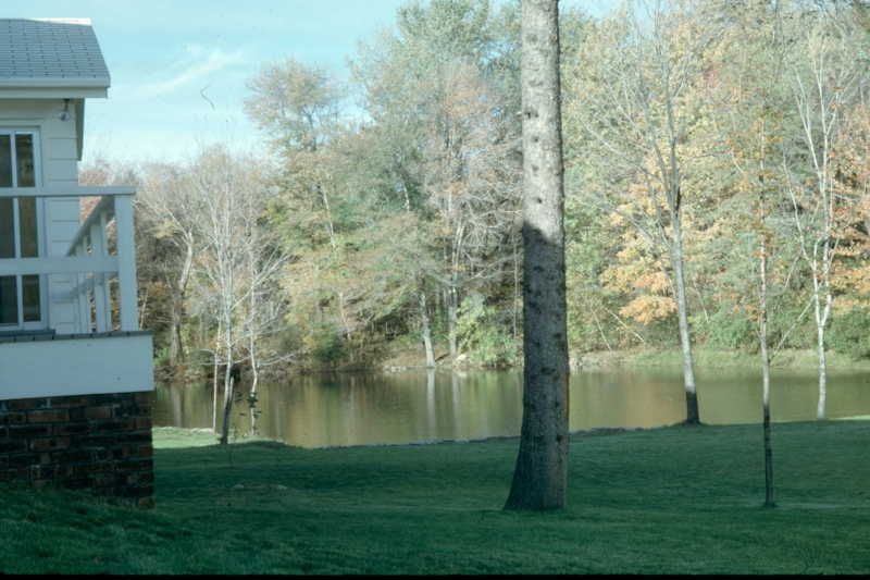 "Photo of ""The Pond"" and our house from 1964."