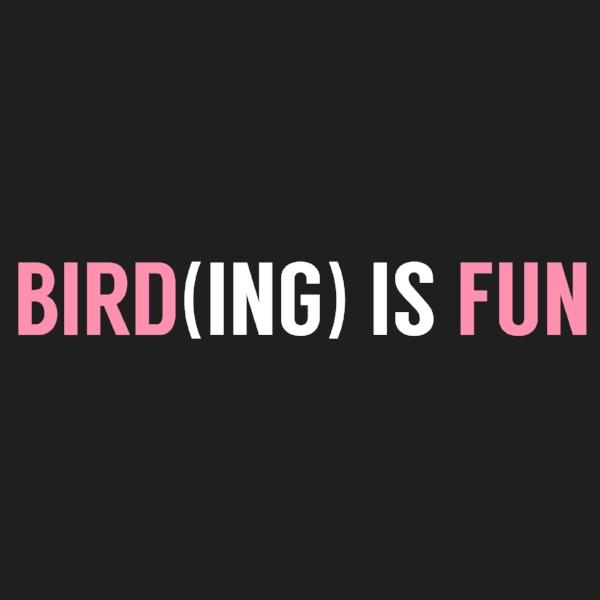 Bird Fun. 2017 Jennifer Hoffman Bird Who Loves Birds