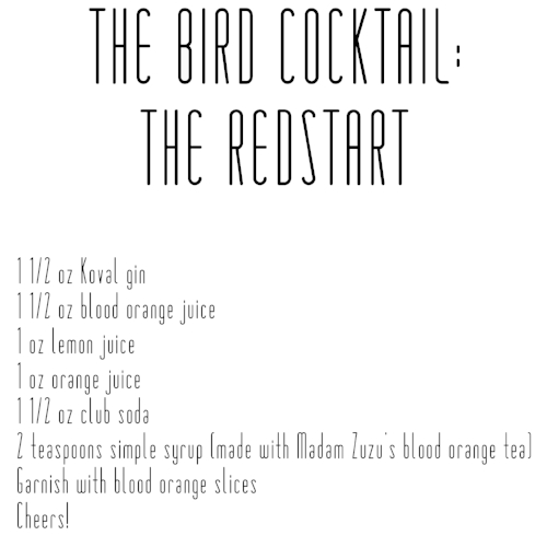 Cocktail Recipe: Jennifer Hoffman.