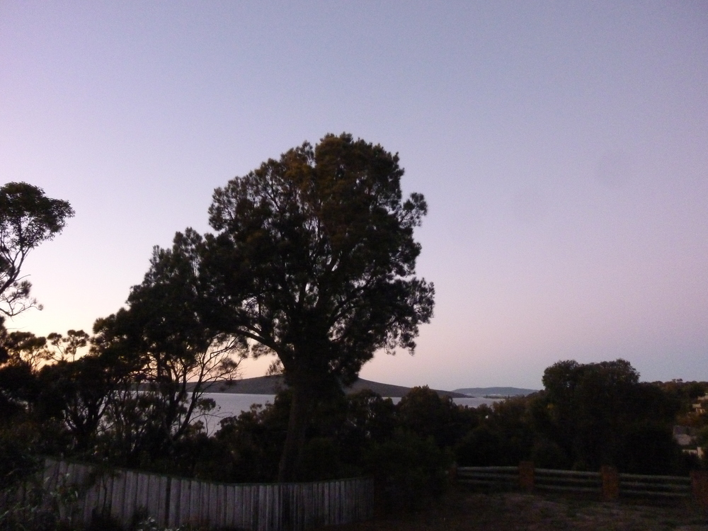 Gull Haven King Island