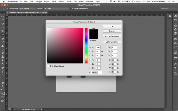 Duotone_Photoshop_tutorial_step_4.png