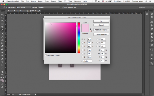 Duotone_Photoshop_tutorial_step_5.png