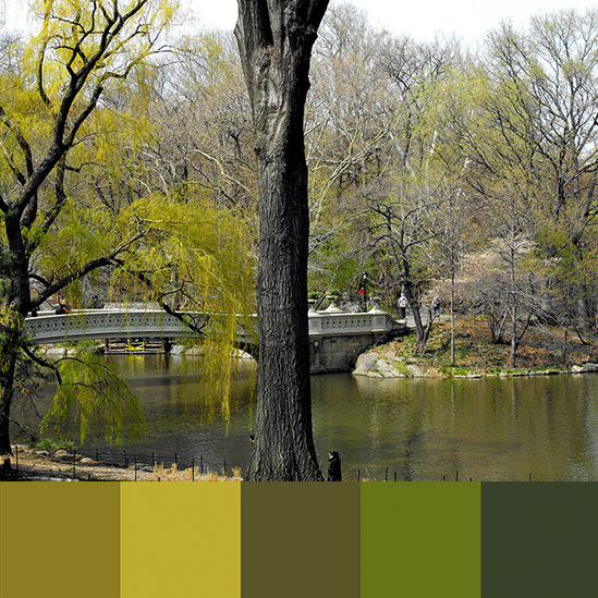 color-palette-new-york-central-park