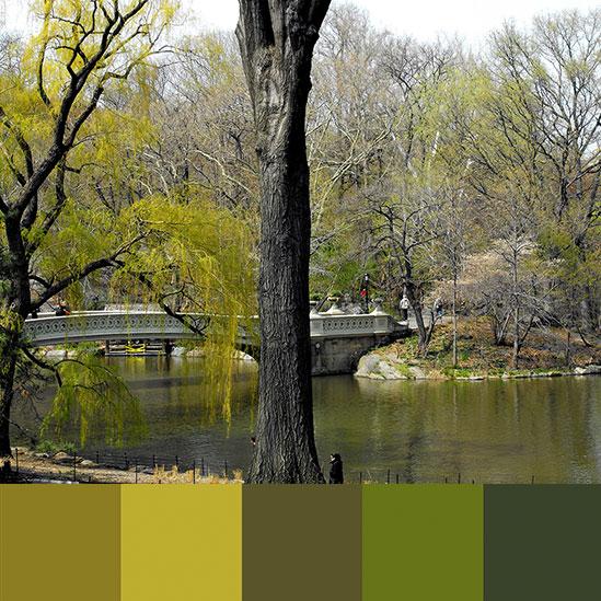 color-palette-new-york-central-park