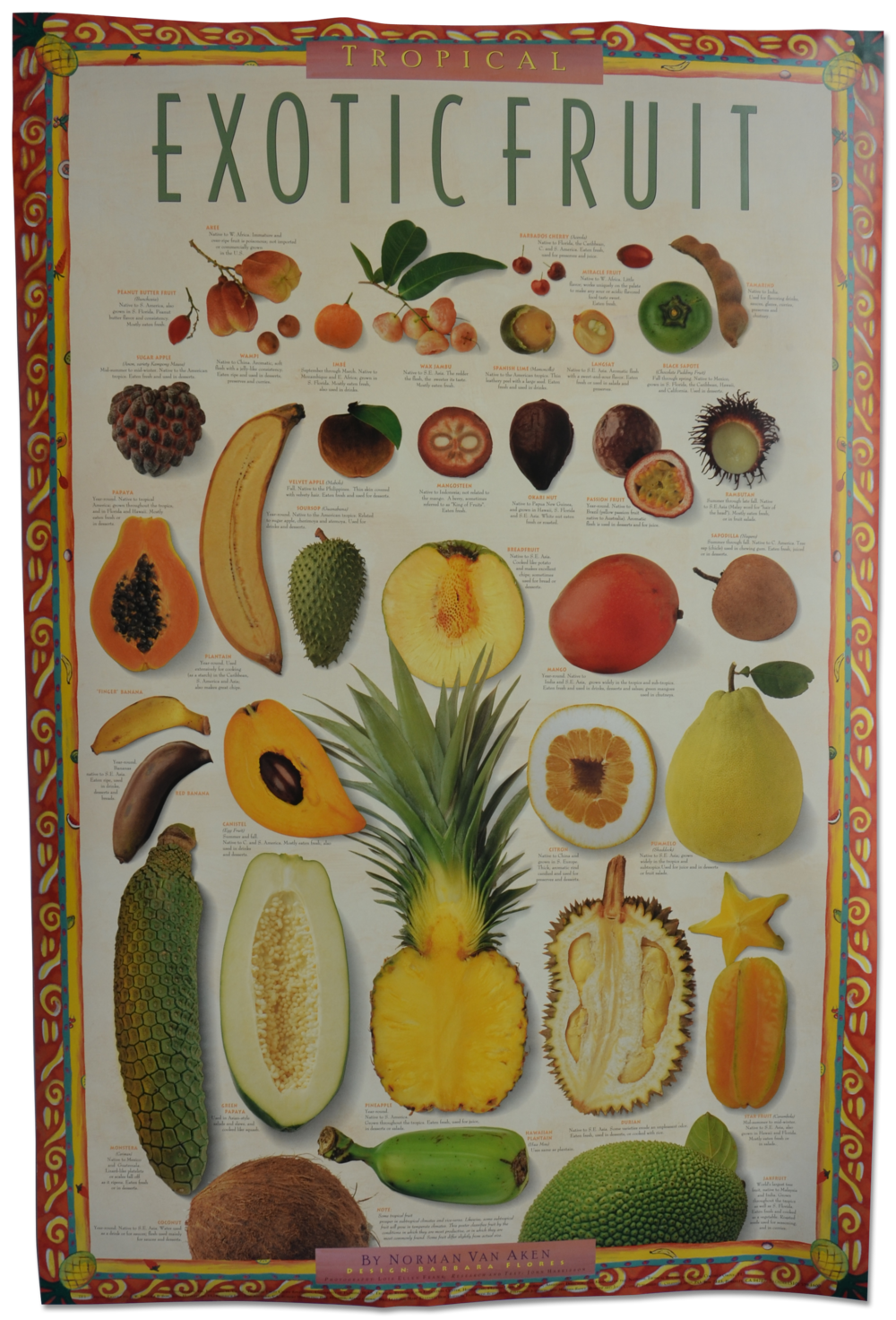 Tropical Exotic Fruits