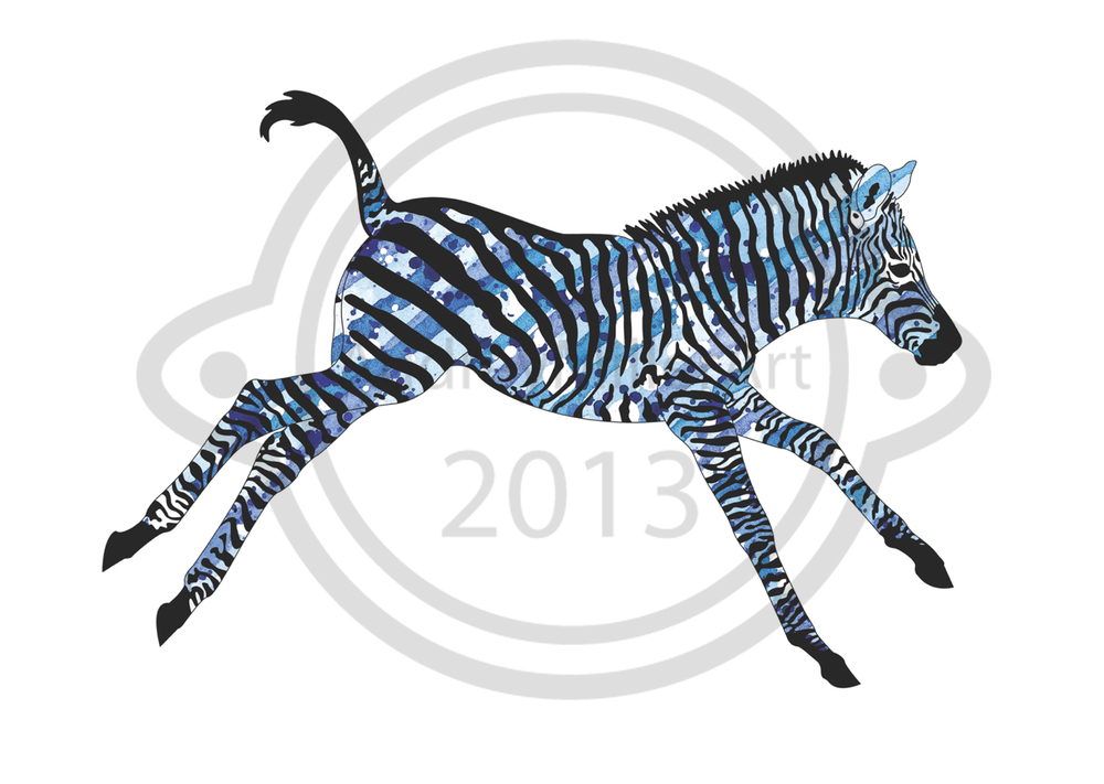 Little Zebra 1