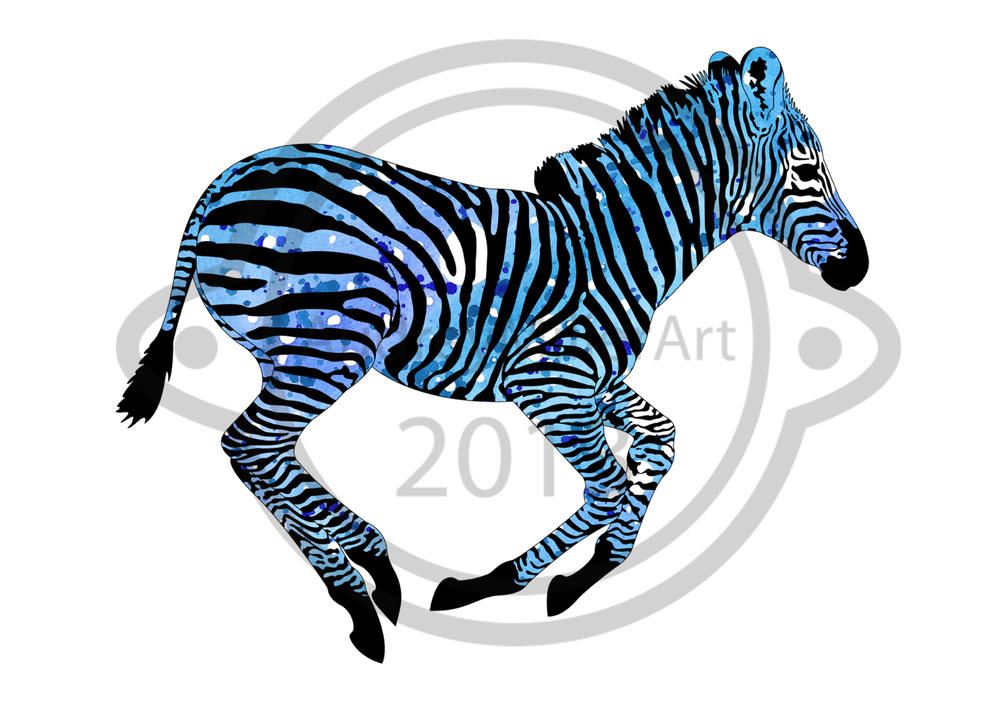 Little Zebra 2