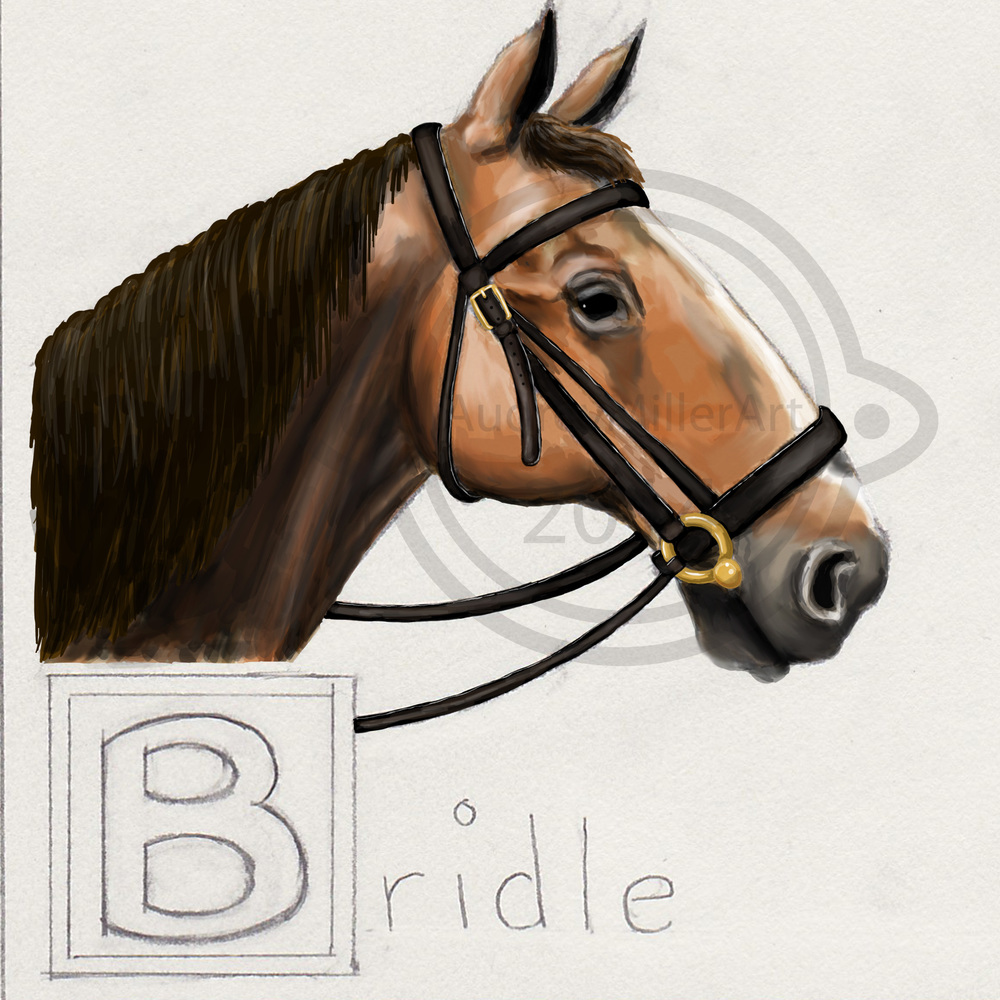 """B is for Bridle"" - ABC's of Horses"