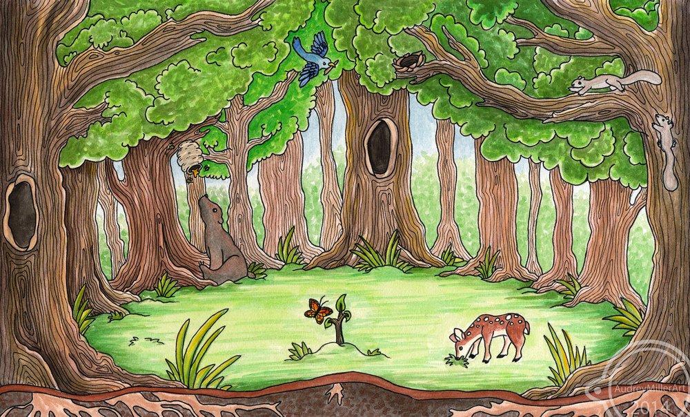 """The Gift of Trees"" sample illustration"