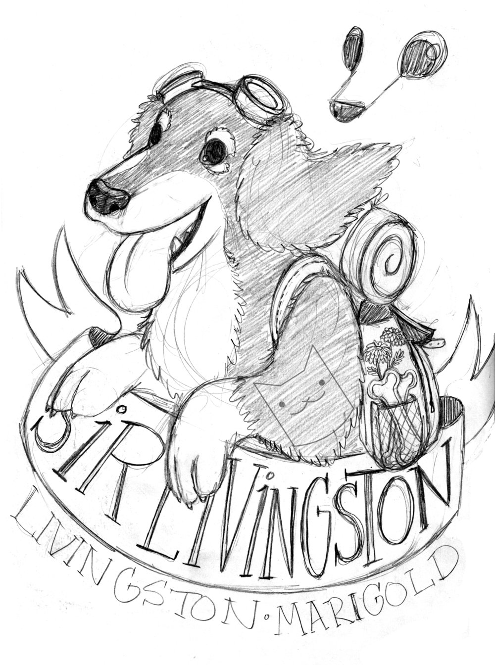 sir livingston sketch.jpg