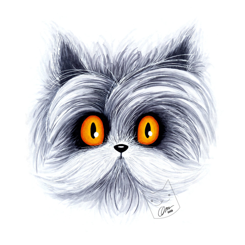 Hairy Cat - Atchoum.jpg
